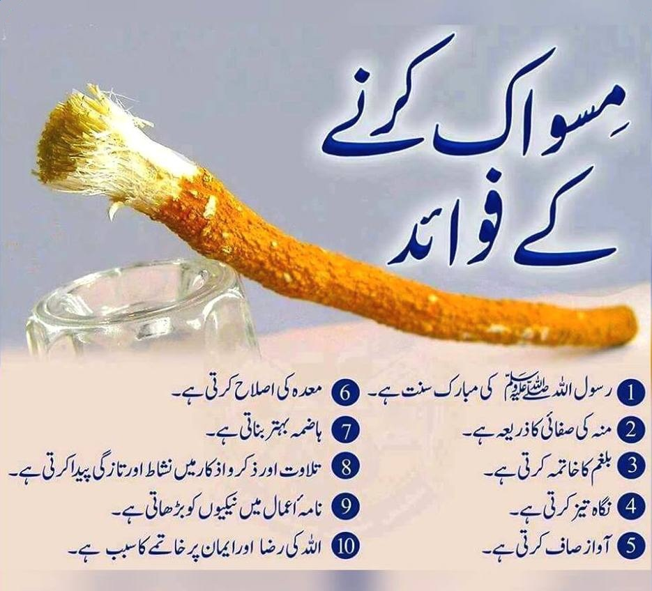 Benefits of Miswak for Heath