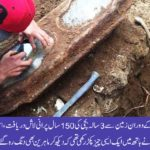 Builders discovered 145 year old coffin of a girl still clutching a rose