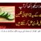 Amazing Health Benefits Of Cucumber