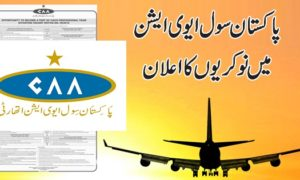 CAA Pakistan Jobs 2016 Civil Aviation Authority Apply Online Latest Advertisement 14 / 2016