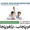 Punjab School Education Department Pakpattan Jobs Educators & AEOs