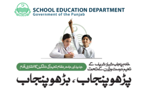 Punjab School Education Department Pakpattan Jobs Educators & AEOs
