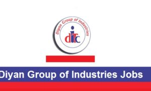 Diyan Group of Industries Jobs 2016 Engineers & Others