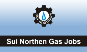 Sui Southern Gas Limited Jobs 2019
