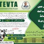Microsoft Certified Free IT Courses in TEVTA