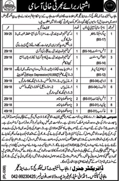 Punjab Information & Culture Department Jobs 2017