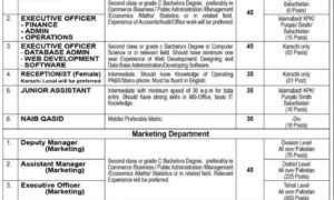 MTS Jobs 2017 Merit Testing Service Pakistan Jobs 2017