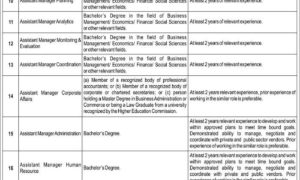 Punjab Thermal Power Pvt Limited Jobs 2017 Latest