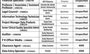 UAE Jobs 2017 over 100 Vacancies in Semi Govt Companies Multiple Categories