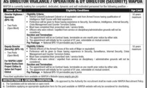 WAPDA Jobs 2017 as Director Vigilance / Operation & Deputy Director Security
