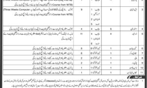 Engineer Center Risalpur Cantt Jobs 2017 Latest