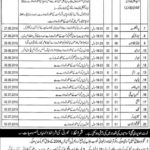 Nishtar Medical University Multan Jobs NMU Latest Jobs