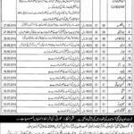 Nishtar Medical University Multan Jobs NMU Latest Jobs
