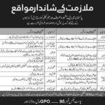 Lahore Jobs in Public Sector Organization PO Box No 95