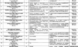 PMU Jobs in Project Management Unit, Govt Of The Punjab Energy Department