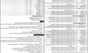 Pakistan Railways Jobs 2018 Latest DAE as Sub Engineers and Others